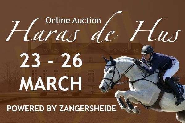Auction Haras de Hus