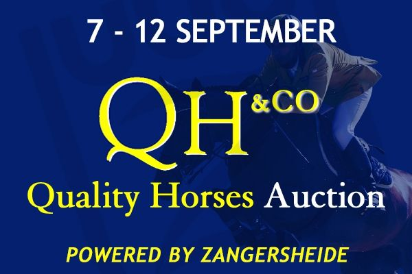 Quality Horses & co Auction