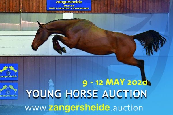 Young Horses May 2020 (3 - 6 years old)