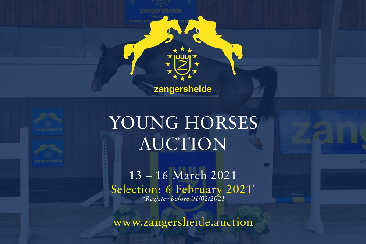 Young Horses March 2021