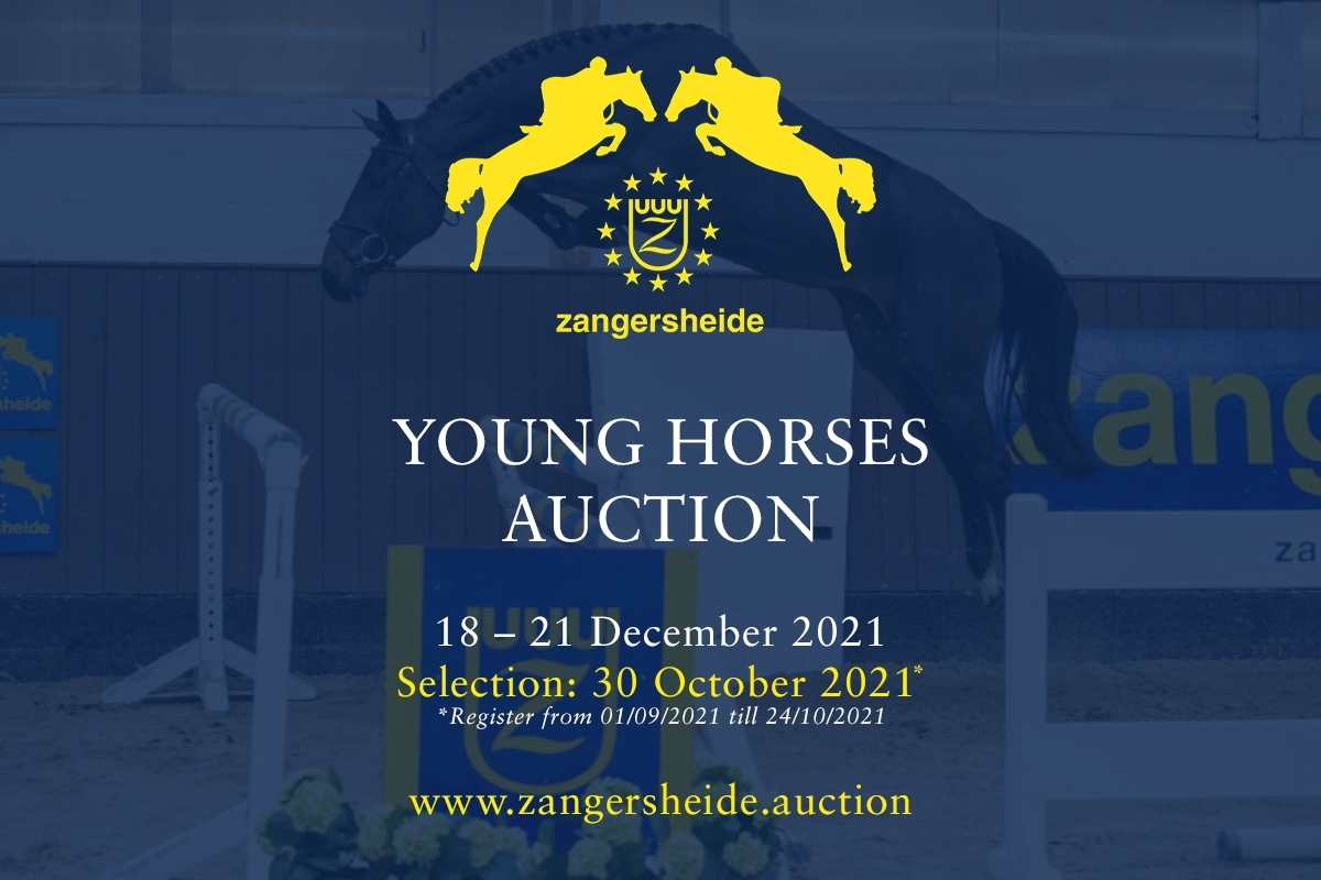 Young Horses December 2021